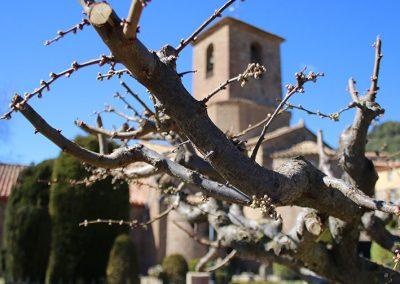 Campanar i capçalera de l'església de Santa Maria de l'Estany